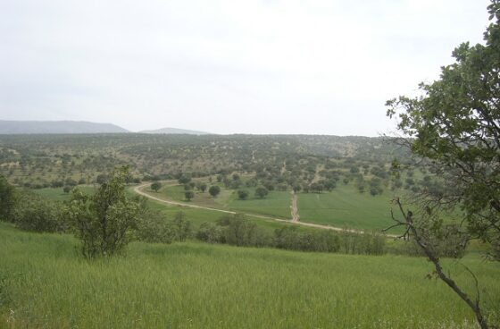 روستای گدمه